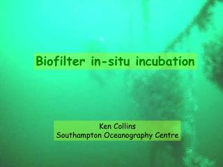 Biofilter in-situ incubation