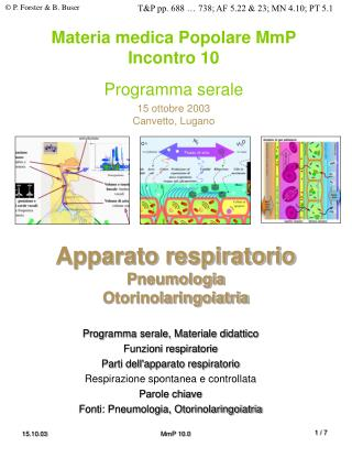 Apparato respiratorio Pneumologia Otorinolaringoiatria