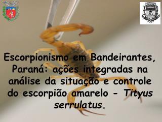 Escorpionismo em Bandeirantes, Paran : a  es integradas na an lise da situa  o e controle do escorpi o amarelo - Tityus