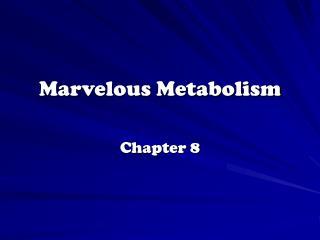 Marvelous Metabolism