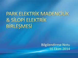 PARK ELEKTRİK MADENCİLİK & SİLOPİ ELEKTRİK BİRLEŞMESİ