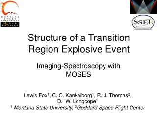 Structure of a Transition Region Explosive Event