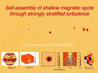 Self-assembly of shallow magnetic spots through strongly stratified turbulence