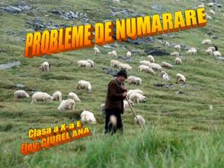 PROBLEME DE NUMARARE