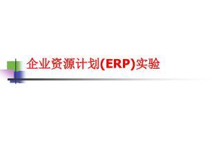 企业资源计划( ERP) 实验