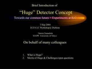 """""""Huge"""" Detector Concept"""