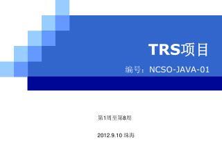 TRS 项目 编号: NCSO-JAVA-01