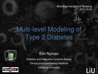 Multi-level Modeling of Type 2 Diabetes