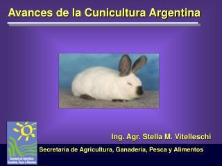 Avances de la Cunicultura Argentina
