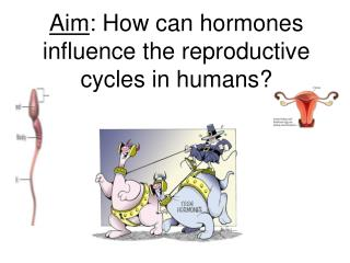 Aim : How can hormones influence the reproductive cycles in humans?