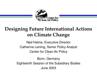 Designing Future International Actions on Climate Change