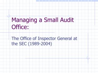 Managing a Small Audit Office: