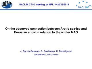 NACLIM CT1-3 meeting, at MPI, 19-20/03/2014