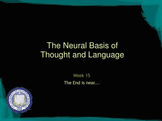 The Neural Basis of Thought and Language