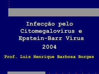 Infecção pelo Citomegalovírus e Epstein-Barr Vírus 2004