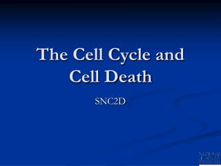 The Cell Cycle and Cell Death