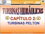 CAP TULO 2:  TURBINAS PELTON