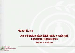G bor Edina A munkahelyi eg szs gfejleszt s lehetos gei, nemzetk zi tapasztalatok  Budapest, 2010. m rcius 9.