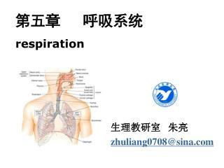 第五章   呼吸系统 respiration