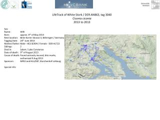 LifeTrack  of White Stork / DER AN863, tag 3040 Ciconia ciconia 2013  to 2013