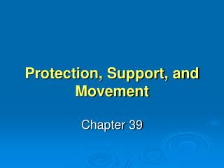 Protection, Support, and Movement