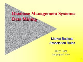 Database Management Systems: Data Mining
