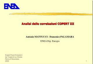 Antonio MATTUCCI - Domenico PALAMARA ENEA Dip. Energia