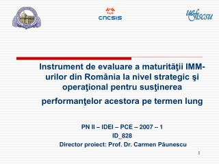 PN II – IDEI – PCE – 2007 – 1 ID_828  Director proiect: Prof. Dr. Carmen Păunescu