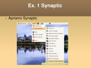 Ex. 1 Synaptic