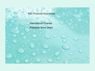 BSc Financial Economics: Bubbles