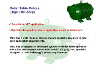 Roller Table Motors  (High Efficiency)