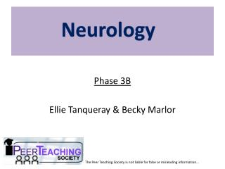 Phase 3B Ellie Tanqueray & Becky Marlor