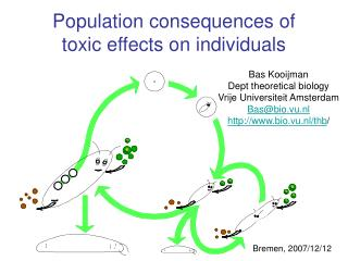Population consequences of toxic effects on individuals