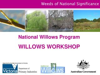 Weeds of National Significance