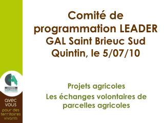 Comité de programmation LEADER GAL Saint Brieuc Sud Quintin, le 5/07/10