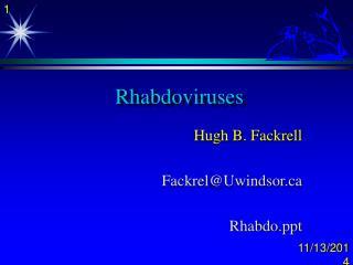 Rhabdoviruses