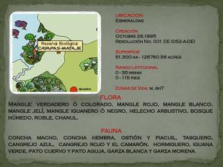 UBICACION Esmeraldas  y Manabí Creación 9 de agosto de 1996 Resolución INEFAN R-045