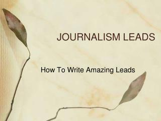 JOURNALISM LEADS