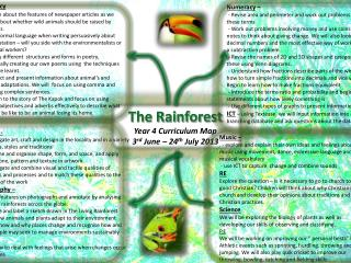 The Rainforest Year 4 Curriculum Map 3 rd  June – 24 th  July 2013