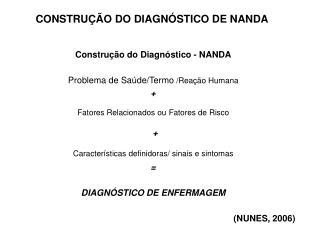 Construção do Diagnóstico - NANDA Problema de Saúde/Termo  /Reação Humana +