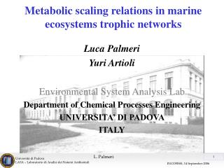 Metabolic scaling relations in marine ecosystems trophic networks