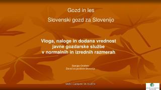 Gozd in les Slovenski gozd za Slovenijo