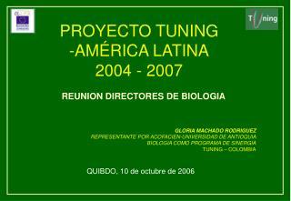 PROYECTO TUNING                 -AMÉRICA LATINA 2004 - 2007