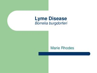 Lyme Disease Borrelia burgdorferi