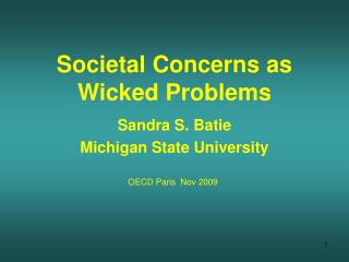 Societal Concerns as Wicked Problems