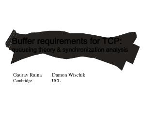 Buffer requirements for TCP: queueing theory & synchronization analysis