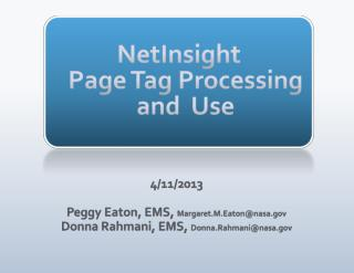NetInsight Page Tag Processing and  Use