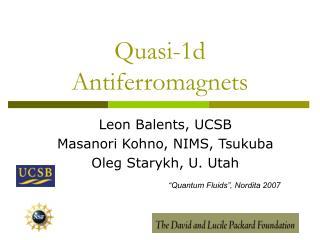 Quasi-1d Antiferromagnets