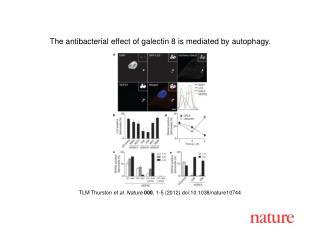 TLM Thurston  et al .  Nature 000 ,  1 - 5  (2012) doi:10.1038/nature10744