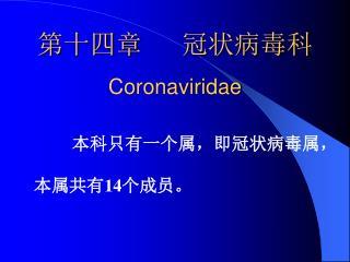 第十四章   冠状病毒科 Coronaviridae